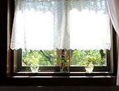 窓ガラス・網戸