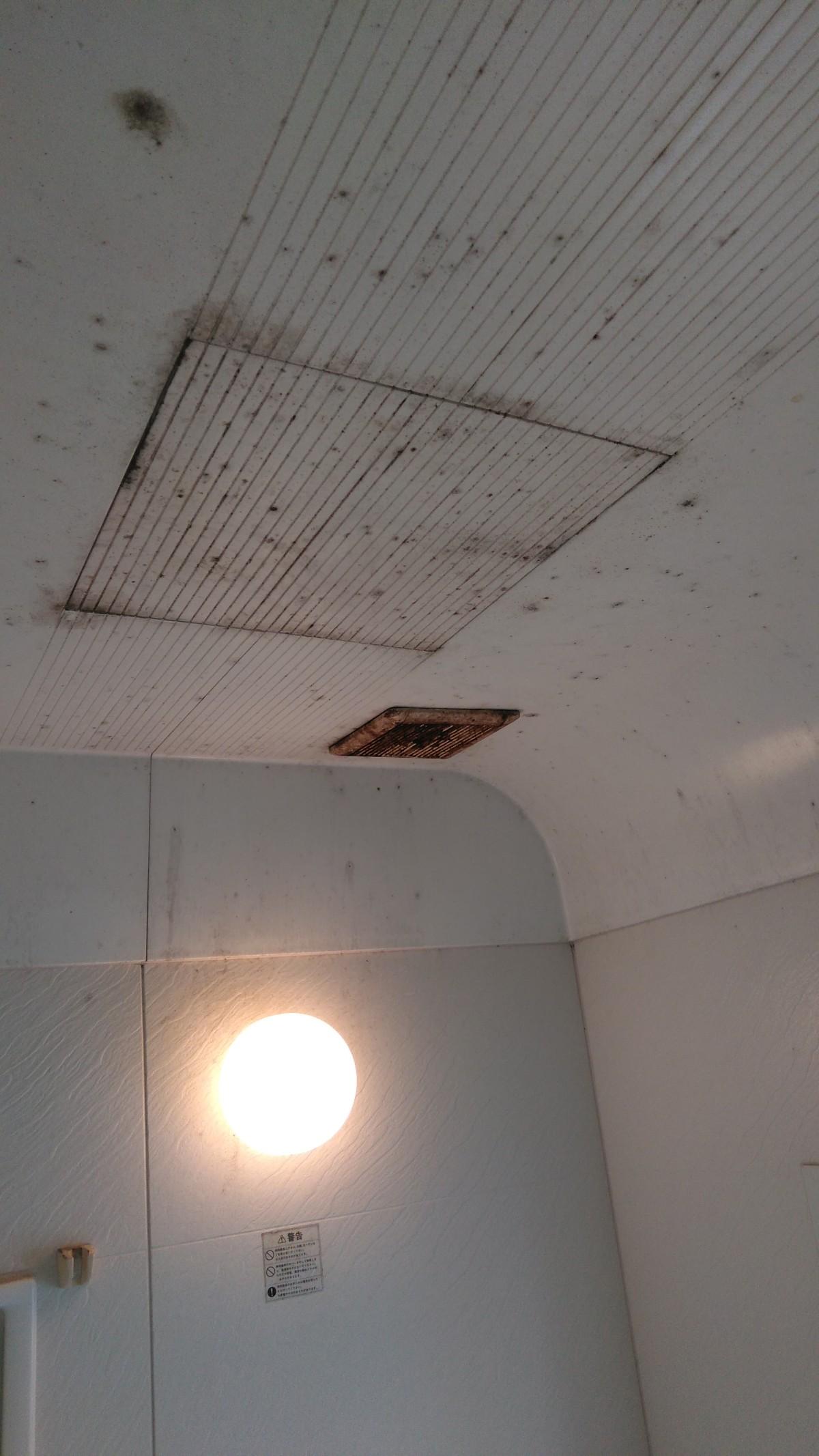 お風呂の天井の黒いカビを何とかしてほしい!Before