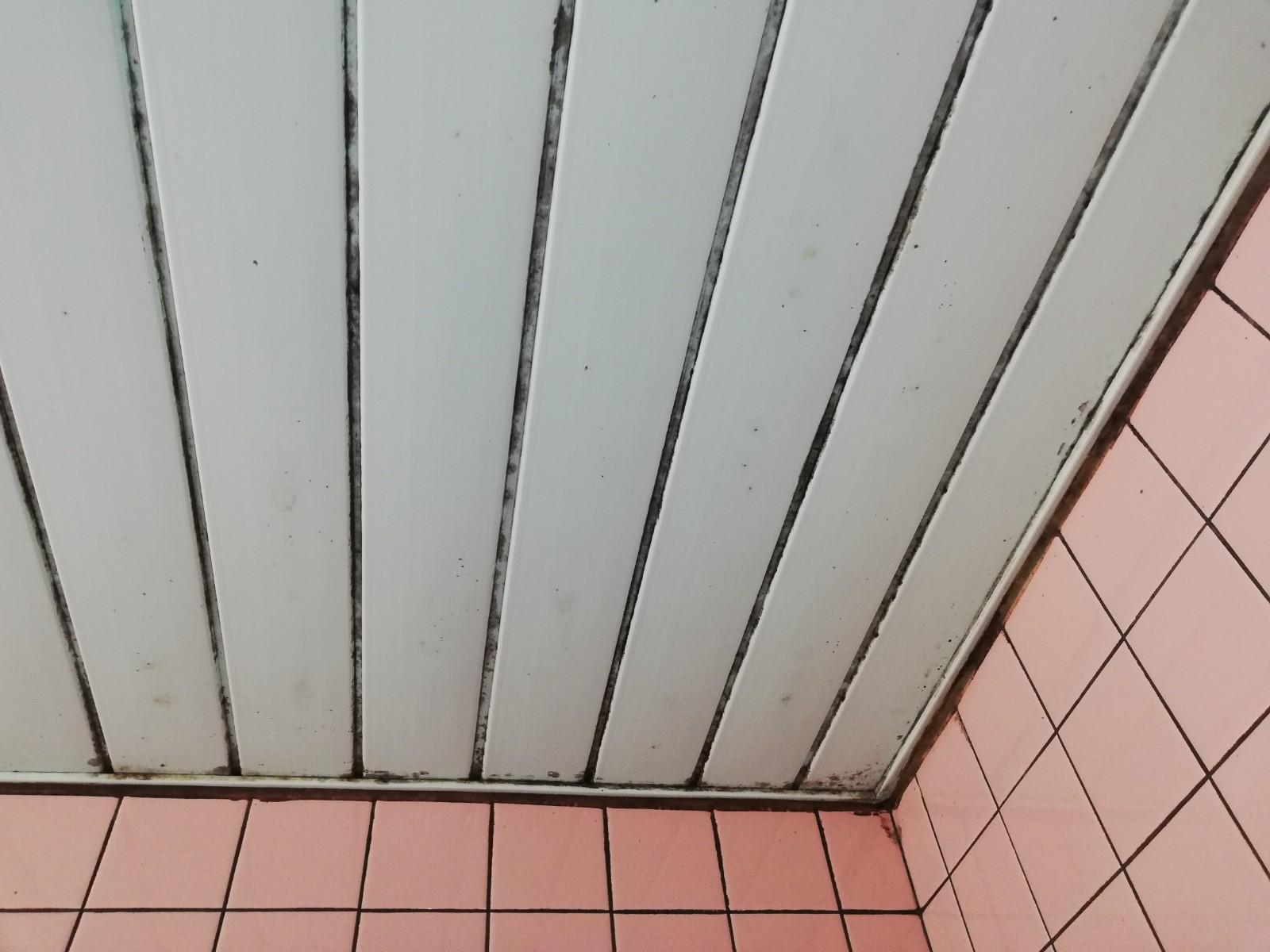 浴室の天井のカビが気になって仕方ない!キレイになりますか?Before