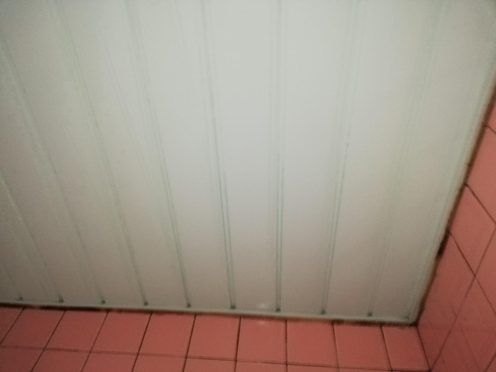 浴室の天井のカビが気になって仕方ない!キレイになりますか?After